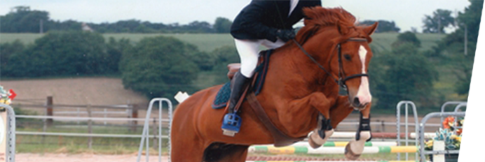 saut cheval beige étriers kvall